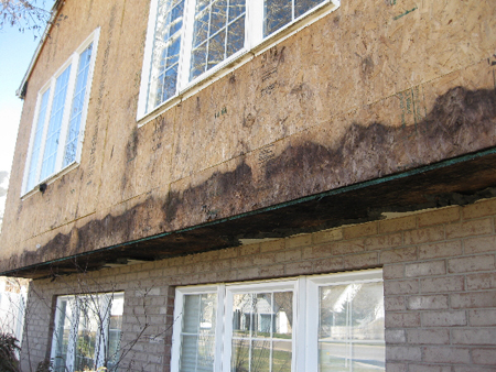Siding valley trades for Removing mold from exterior wood siding